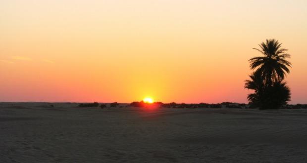 Очень горящий тур в Тунис из СПб на 11 ночей от 13900₽/чел. (завтрак+ужин)