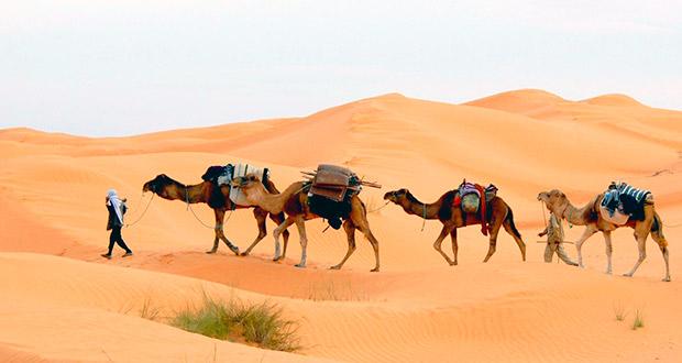 Без виз! Горящий тур Тунис из Мск на 7 ночей от 13400₽/чел. (завтрак+ужин)